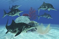 A group of large Ichthyosaurus marine reptiles swimming in prehistoric waters by Corey Ford - various sizes