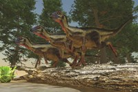 A group of herbivorous Hypsilophodon dinosaurs by Corey Ford - various sizes, FulcrumGallery.com brand