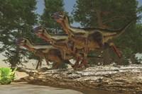 A group of herbivorous Hypsilophodon dinosaurs by Corey Ford - various sizes