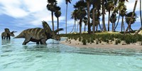 Two Coahuilaceratops dinosaurs wade through tropical waters Fine Art Print