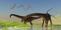 A flock of Pterosaur birds fly over two Diplodocus dinosaurs by Corey Ford - various sizes