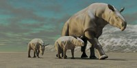 A Paraceratherium mother with two twin calves walks along a desert by Corey Ford - various sizes