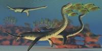 Plesiosaurus dinosaurs chase a school of Lemonpeel Angelfish by Corey Ford - various sizes