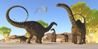 Herd of Apatosaurus dinosaurs wander through a prehistoric forest by Corey Ford - various sizes