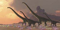 A family of Mamenchisaurus dinosaurs by Corey Ford - various sizes
