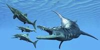 Liopleurodon reptile hunting Ichthyosaurus dinosaurs in Jurassic seas Fine Art Print