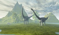 Diplodocus dinosaurs walk together in the afternoon in the prehistoric age Fine Art Print