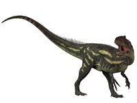 Allosaurus, a prehistoric era dinosaur by Corey Ford - various sizes - $47.99