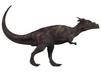 Dracorex, a herbivorous dinosaur from the Cretaceous period Fine Art Print
