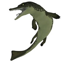 Metriorhynchus, an extinct genus of crocodyliform from the Jurassic Period by Corey Ford - various sizes, FulcrumGallery.com brand