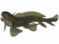 Xenacanthus, a Devonian freshwater shark Fine Art Print