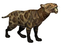 Illustration of a Smilodon Cat from the Cenozoic Era by Corey Ford - various sizes