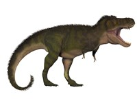 Tyranosaurus Rex, a carnivore of the Cretaceous Period by Corey Ford - various sizes
