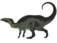 Camptosaurus, a herbivorous dinosaur from the Late Jurassic Period Fine Art Print
