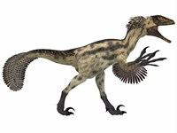 Deinonychus, a carnivorous dinosaur from the early Cretaceous Period by Corey Ford - various sizes, FulcrumGallery.com brand
