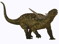 Sauropelta, a herbivorous dinosaur from the Cretaceous Period by Corey Ford - various sizes