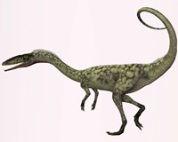 Coelophysis bauri dinosaur from the Triassic Period by Corey Ford - various sizes, FulcrumGallery.com brand