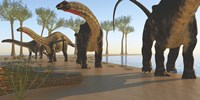 A herd of Apatosaurus dinosaurs by Corey Ford - various sizes