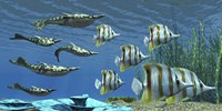 Prehistoric Pteraspis jawless fish swimming with a group of Chelmon Butterflyfish by Corey Ford - various sizes - $47.99