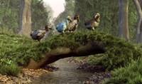 A group of Dodo birds crossing a natural bridge over a stream Fine Art Print