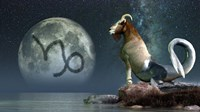 Capricorn is the tenth astrological sign of the Zodiac by Daniel Eskridge - various sizes, FulcrumGallery.com brand