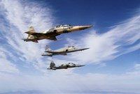 An F-5F Tiger II leads two F-5E's during a training flight Fine Art Print