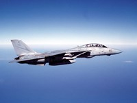 F-14A Tomcat in flight above the Pacific Ocean Fine Art Print