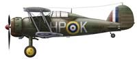 A Gloster Gladiator Mk II Fine Art Print