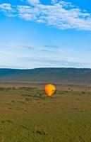 Kenya, Maasai Mara, hot air ballooning at sunrise by Bill Bachmann - various sizes