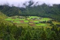 Houses and Farmlands, Gangtey Village, Bhutan by Keren Su - various sizes