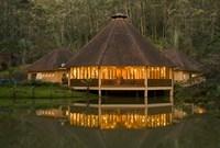 Madagascar, Vakona Forest Lodge, Resort, Mantadia NP Fine Art Print