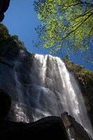 Madonna and Child waterfall, Hogsback, South Africa Fine Art Print