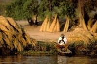 Local Man Fishing and Piles of Straw for Hatch, Okavango Delta, Botswana Fine Art Print