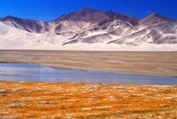 Landscape of Mt Kunlun and Karakuli Lake, Silk Road, China Fine Art Print