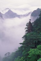 Landscape of Mt Huangshan in Mist, China by Keren Su - various sizes - $43.49