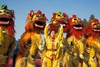 Lion dance performance celebrating Chinese New Year Beijing China - MR by Keren Su - various sizes