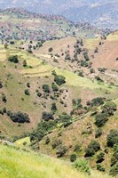 Landscape in Tigray, Northern Ethiopia by Martin Zwick - various sizes - $45.99