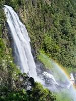 Karura Falls, Aberdare National Park, Kenya by Martin Zwick - various sizes, FulcrumGallery.com brand