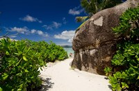 Popular Anse Source D'Agent white sand beach, Island of La Digue, Seychelles by Cindy Miller Hopkins - various sizes