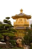 Nan Lian Garden, Perfection Pavillion, Hong Kong, China Fine Art Print