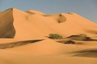 MOROCCO, Tafilalt, MERZOUGA: Erg Chebbi Desert Fine Art Print