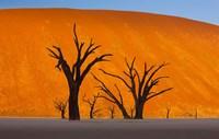 Namib-Naukluft National Park, Namibia by Art Wolfe - various sizes