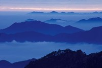 Mt Huangshan (Yellow Mountain) in Mist, China by Keren Su - various sizes
