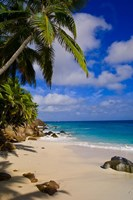 Serene Anse Victorin Beach, Seychelles, Africa by Alison Wright - various sizes, FulcrumGallery.com brand