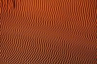 Sand dune patterns,  Namibia Fine Art Print