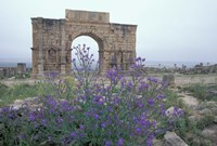 Ruins of Triumphal Arch in Ancient Roman city, Morocco Fine Art Print