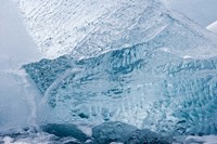South Georgia Island, Wirik Bay, Glacier ice Fine Art Print