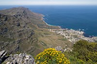South Africa, Cape Town, Table Mountain, Cape Peninsula by Paul Souders - various sizes