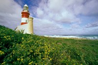 South Africa, Cape Agulhas Lighthouse by Michele Benoy Westmorland - various sizes