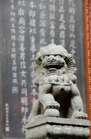 Stone lion statue, Jade Buddha Temple, Shanghai, China by Cindy Miller Hopkins - various sizes